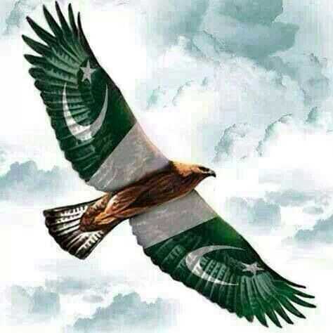 Pin By Hania Ahmed On Cricket Pakistan Independence Pakistan Independence Day Pakistan Independence Day Images