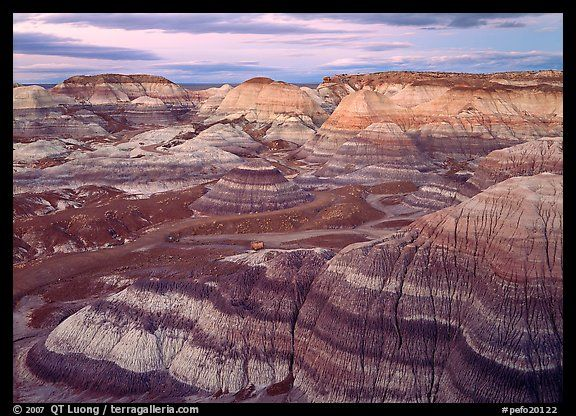 Petrified forest national park is a united states national park in petrified forest national park is a united states national park in navajo and apache counties in sciox Choice Image