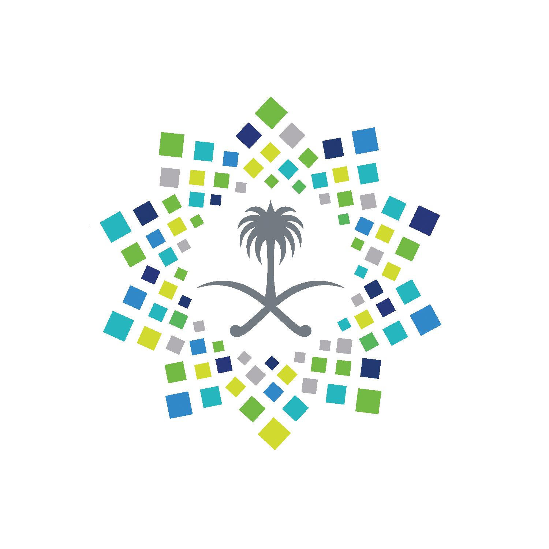 vision2030-saudi-arabia-Logo-PNG-icon | VISION 2030 ...