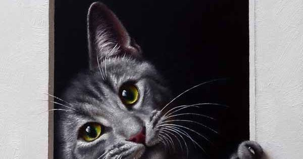Honestly Who Can Resist This Grey Tabby Cats Crazy Cats Ink Pen Drawings