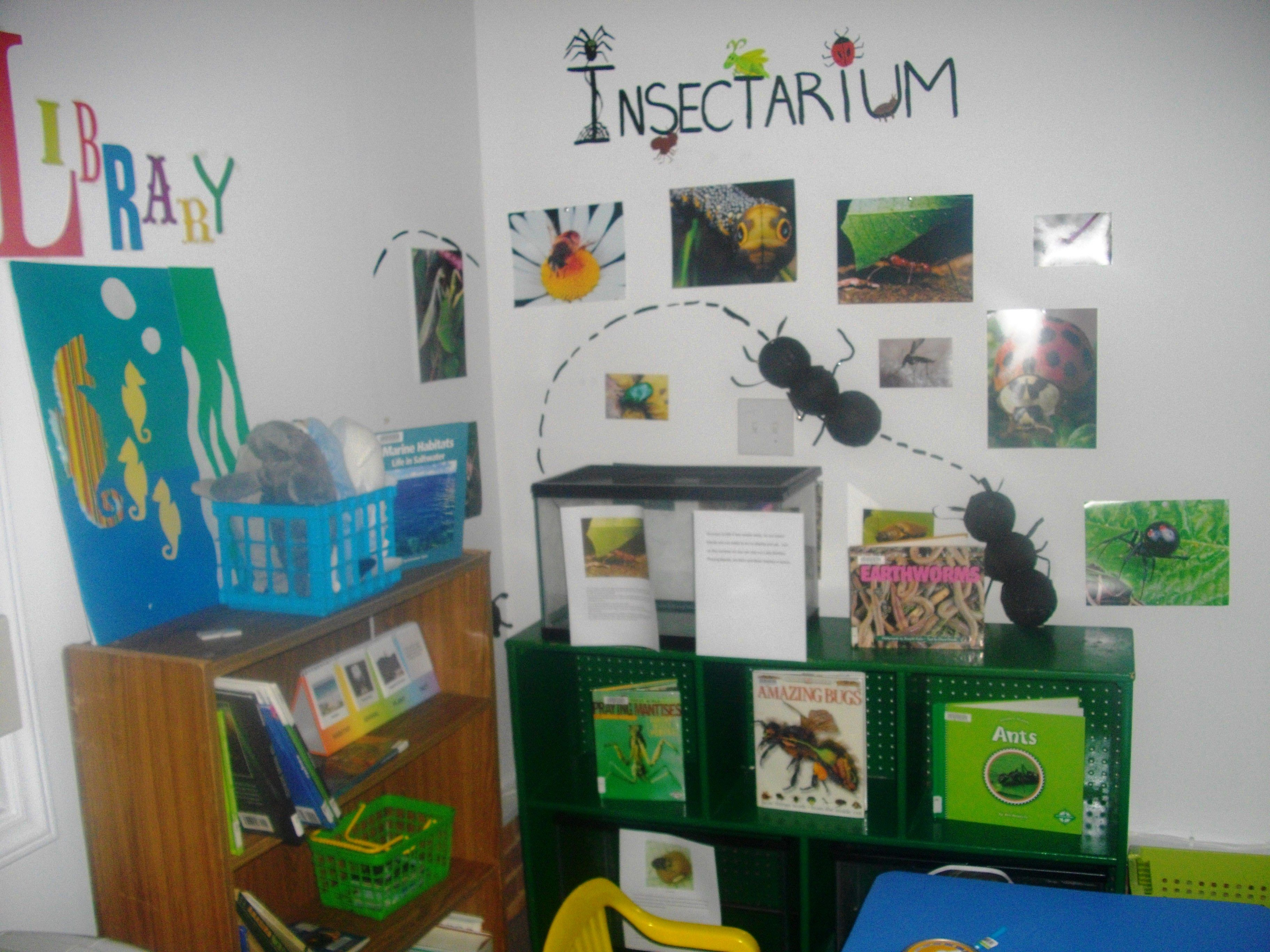 Insectarium for the insects i want stick insects giant for Bug themed bedroom ideas
