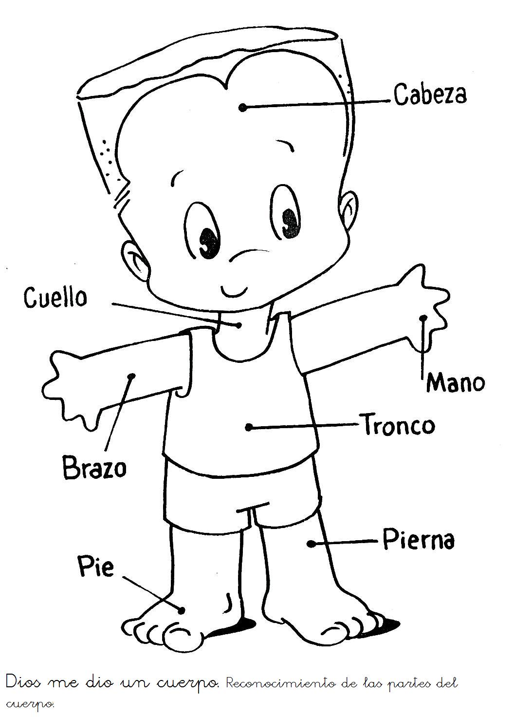 Dorable Grupos De Alimentos Para Colorear Páginas Para Preescolares ...