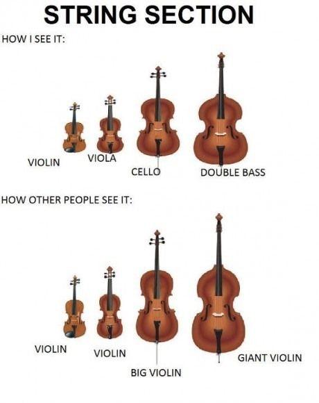 Violin Vs Viola Vs Cello Vs Double Bass Funny Stuff