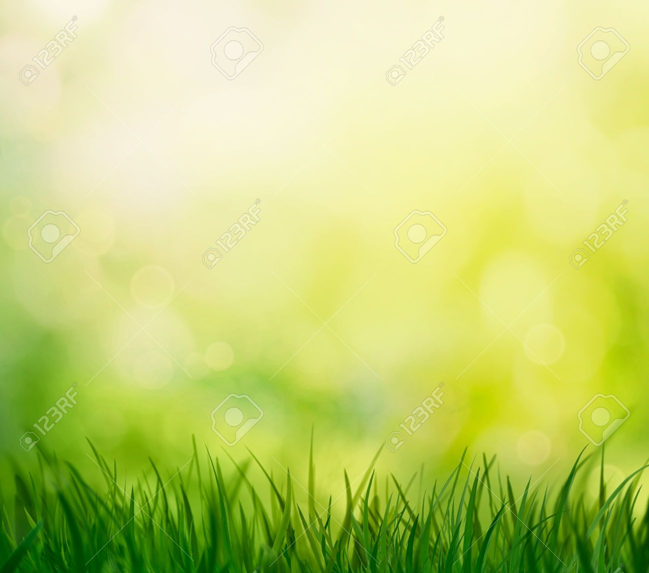 Stock Photo Spring Pictures Blurred Background Bokeh