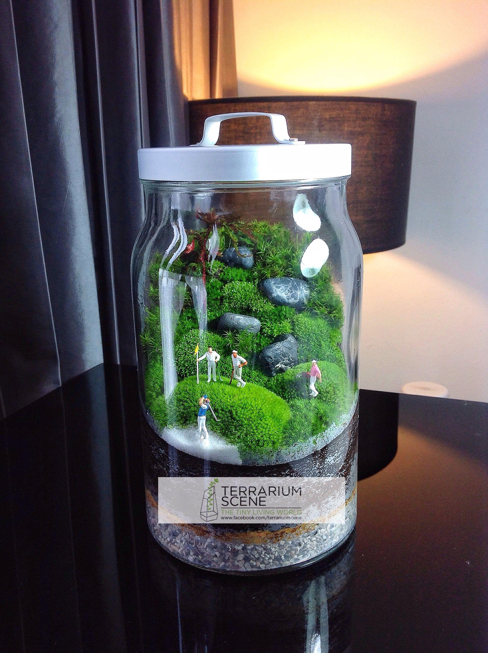 Terrarium scene terrarium scene pinterest salzteig for Originelle zimmerpflanzen