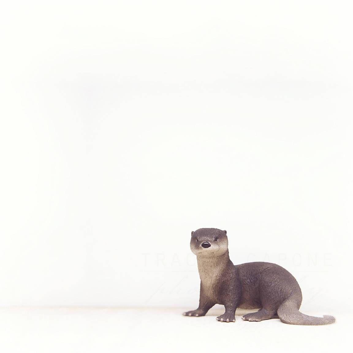 Otter Portrait | Nursery Wall Art