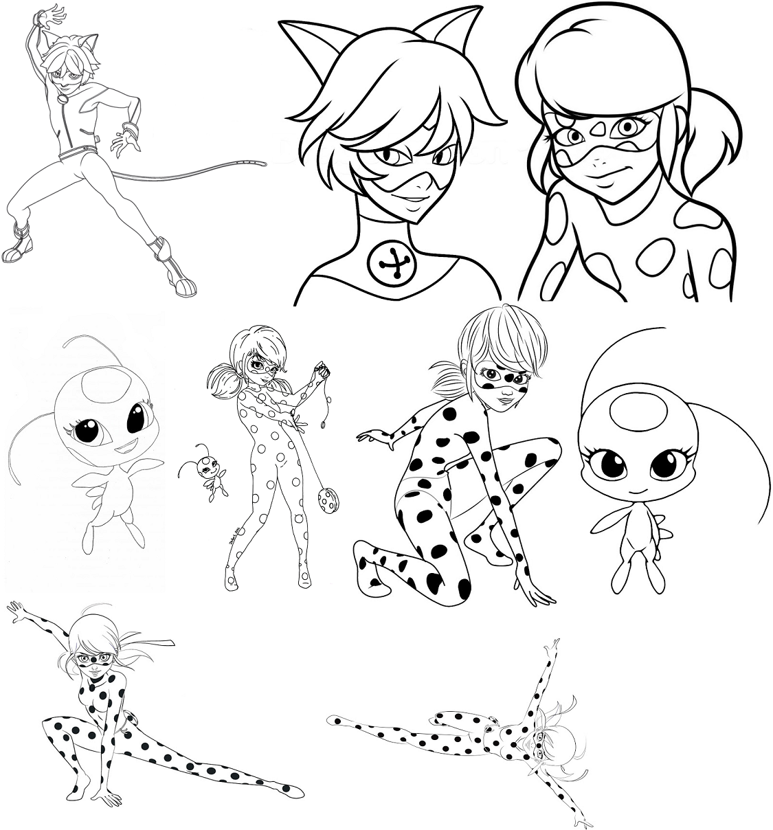 Miraculous Lady bug e Cat noir