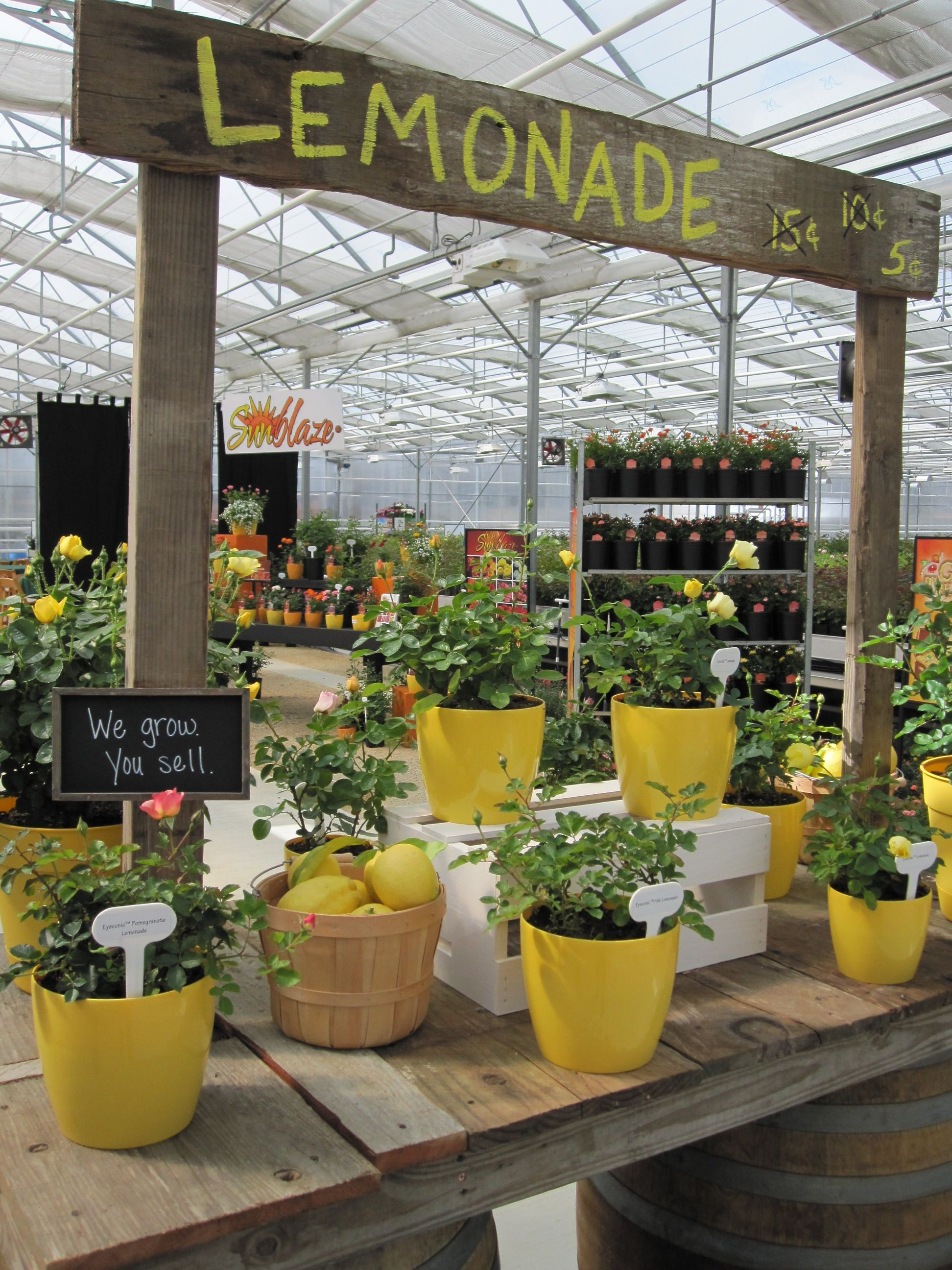 Cute Theme With Images Garden Center Displays Garden Nursery