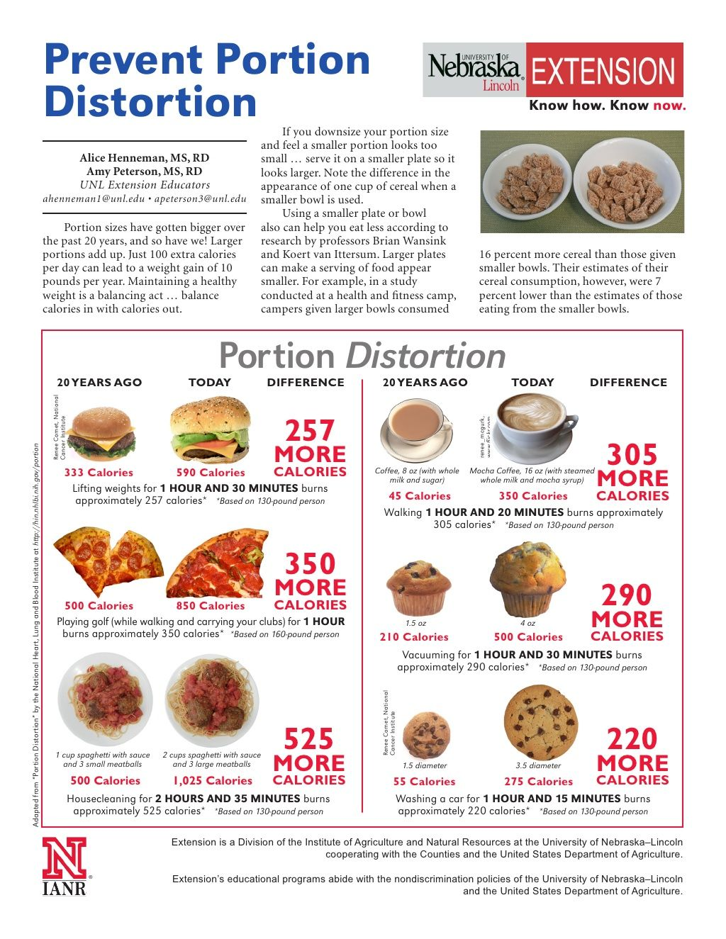 Portion size guide handout definition