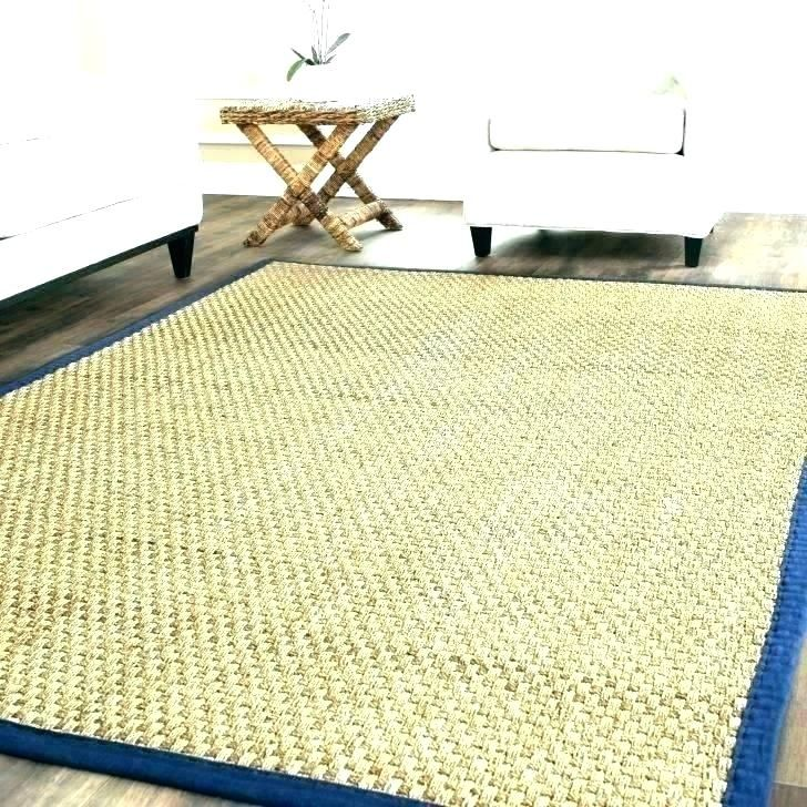 Elegant Patio Rugs Lowes Images New Or