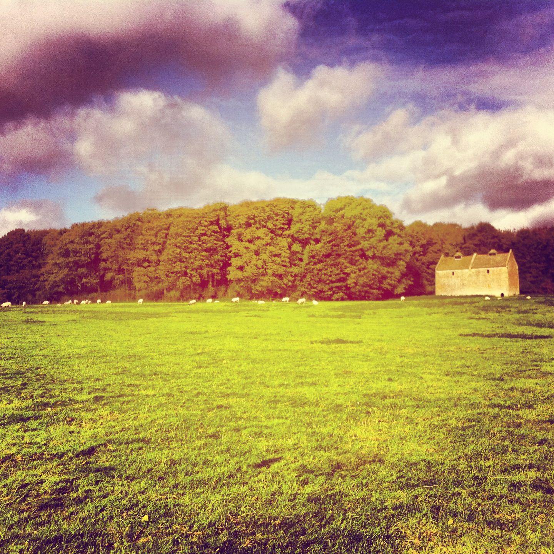 The dovecote in Newton