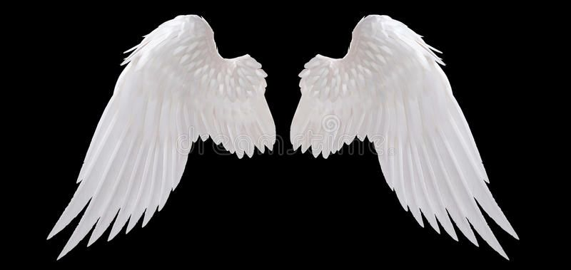 White Angel Wing Isolated On Black Sponsored Angel White