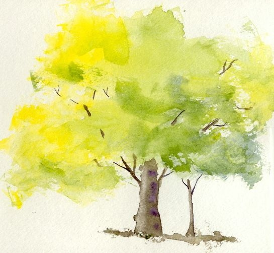 Watercolor Tree Like Tree Watercolor Painting Watercolor