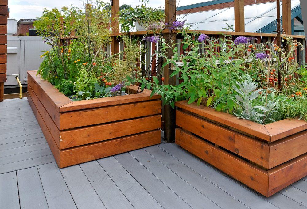 32 Raised Wooden Garden Bed Designs & Examples | Small ... on backyard vegetable garden design, raised planter beds design, raised vegetable garden design,