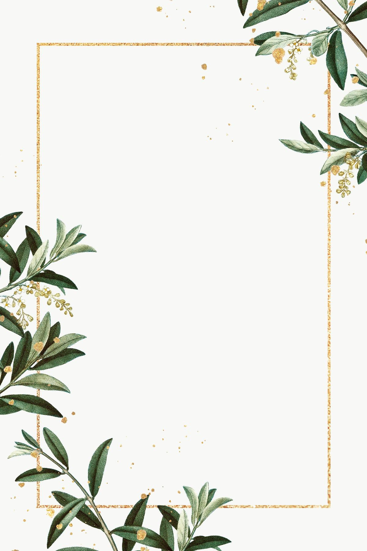Download free png of Olive branches frame png hand drawn border design space by Ning about olive branch, olive, nature wallpaper, Green leaves frame, and frame png 2523395