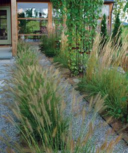 Line up grasses to reinforce a linear design a long low for Fountain grass landscaping ideas