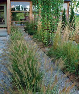 Designing With Grasses Finegardening Garden Design Rock Garden Landscaping Garden Design Layout