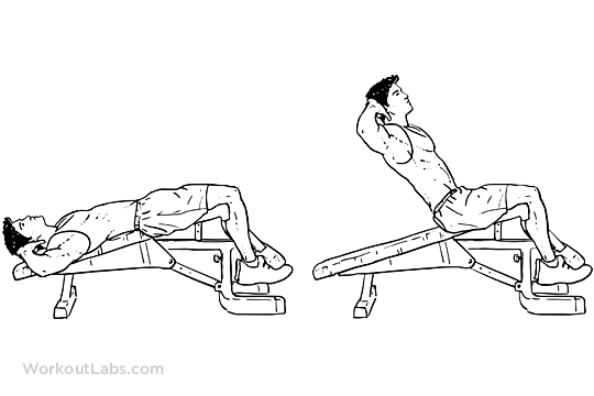Shoulders Abs Day Decline Bench Crunches Sit Ups 50reps X 4sets Bench Workout Workout Guide Crunches