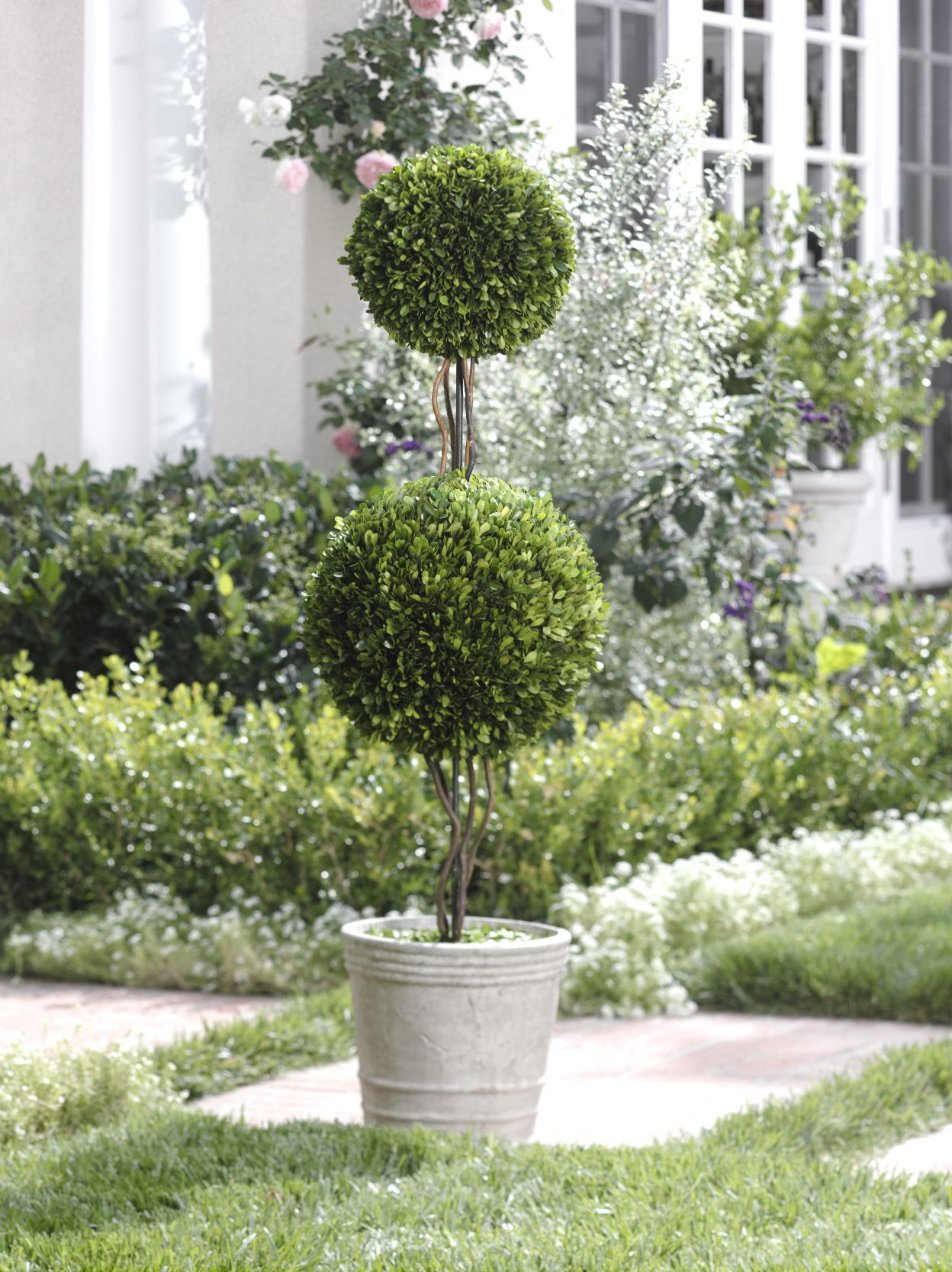 Interested In Decorating Your Home And Garden Here You 39 Ll Find Some Topiary Planter Ideas That Will Add A Front Flower Beds Boxwood Garden Boxwood Topiary