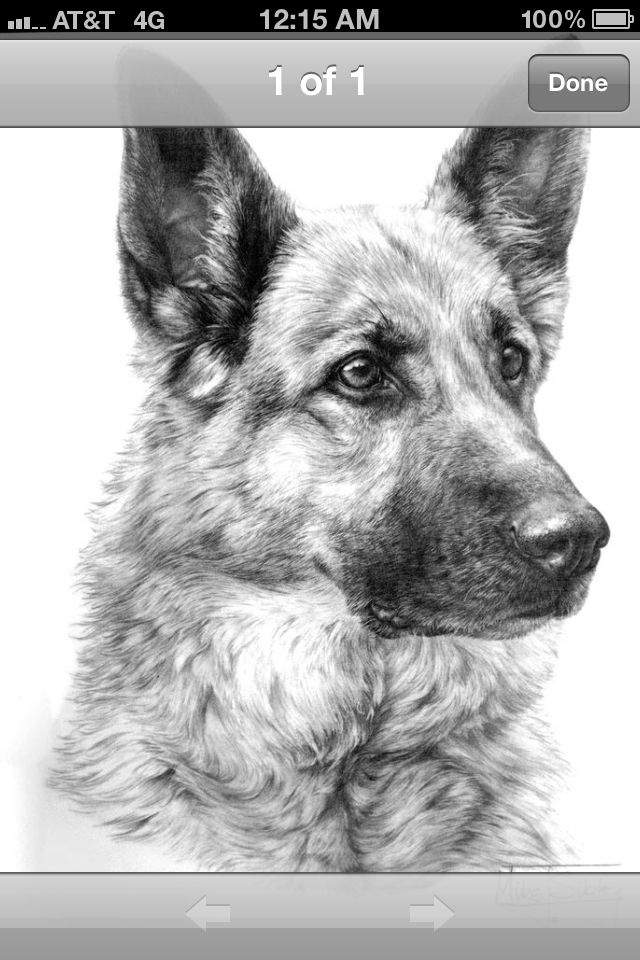 Beautiful pencil drawing | pencil art | Pinterest | Lápiz, Dibujo y ...