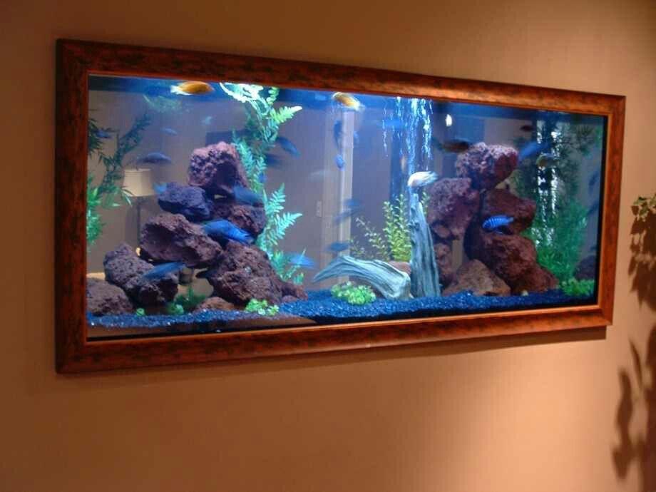 Pin By Sylvia Campbell On Fish Tanks Wall Aquarium Aquarium