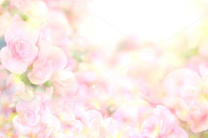 Soft Sweet Pink Flower Background Flower Backgrounds Pink Flowers Background Pink Flowers
