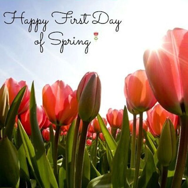 Spring  C B Happy First Day