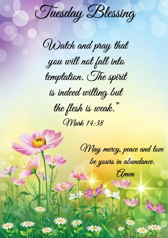 Pin by Inell Moore on Prayer Life | Morning prayer quotes ...