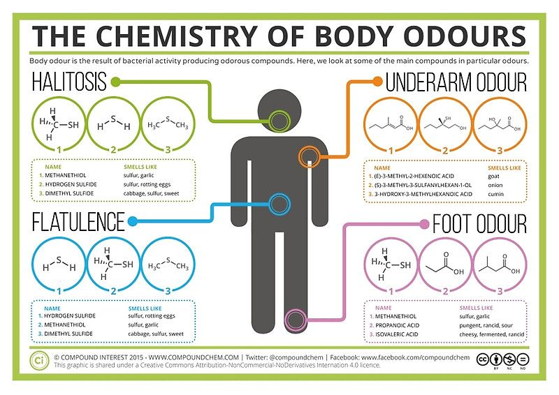 The Chemistry of Body Odours\' Poster by Compound Interest | Bulletin ...