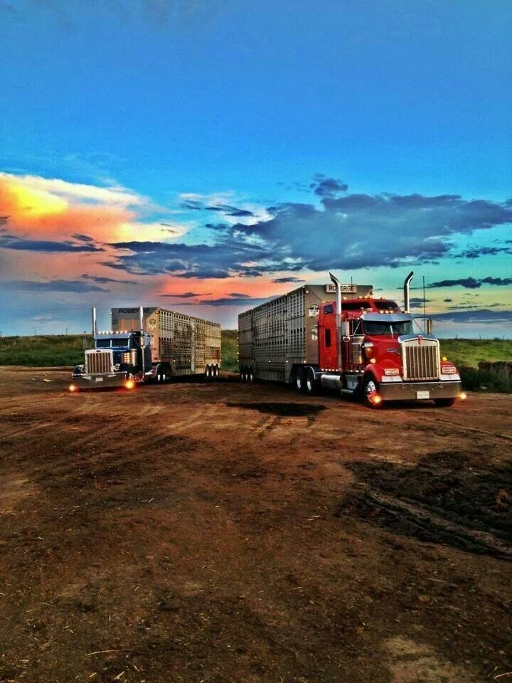 Peterbilt & Kenwolth Hot rigs ! Pinterest Peterbilt