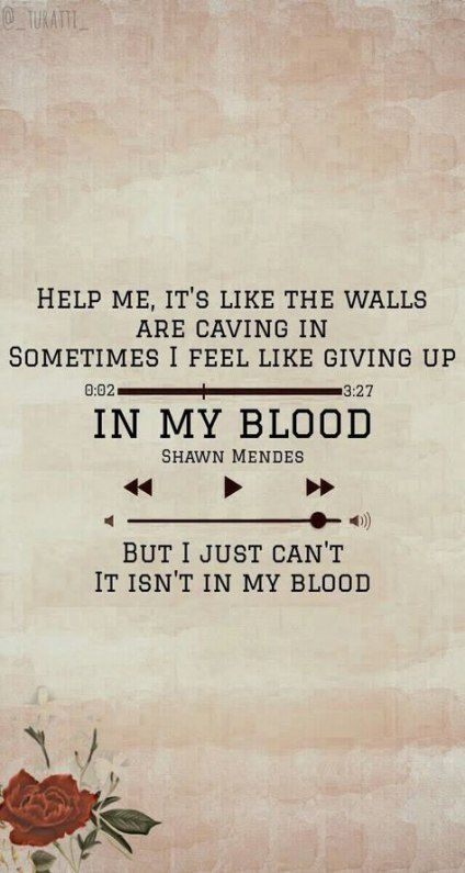 Pin By Nora Arnold On Song Lyrics Quotes In 2020 Shawn Mendes