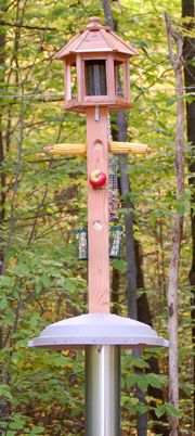 Our Customers Swear By This Proven Bester Based On Years Of Positive Feedback Prefer Squirrel Resistant Metal Feeder For