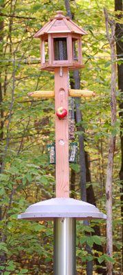 Wooden Bird Feeder Poles My Backyard Birds Love This Feeder