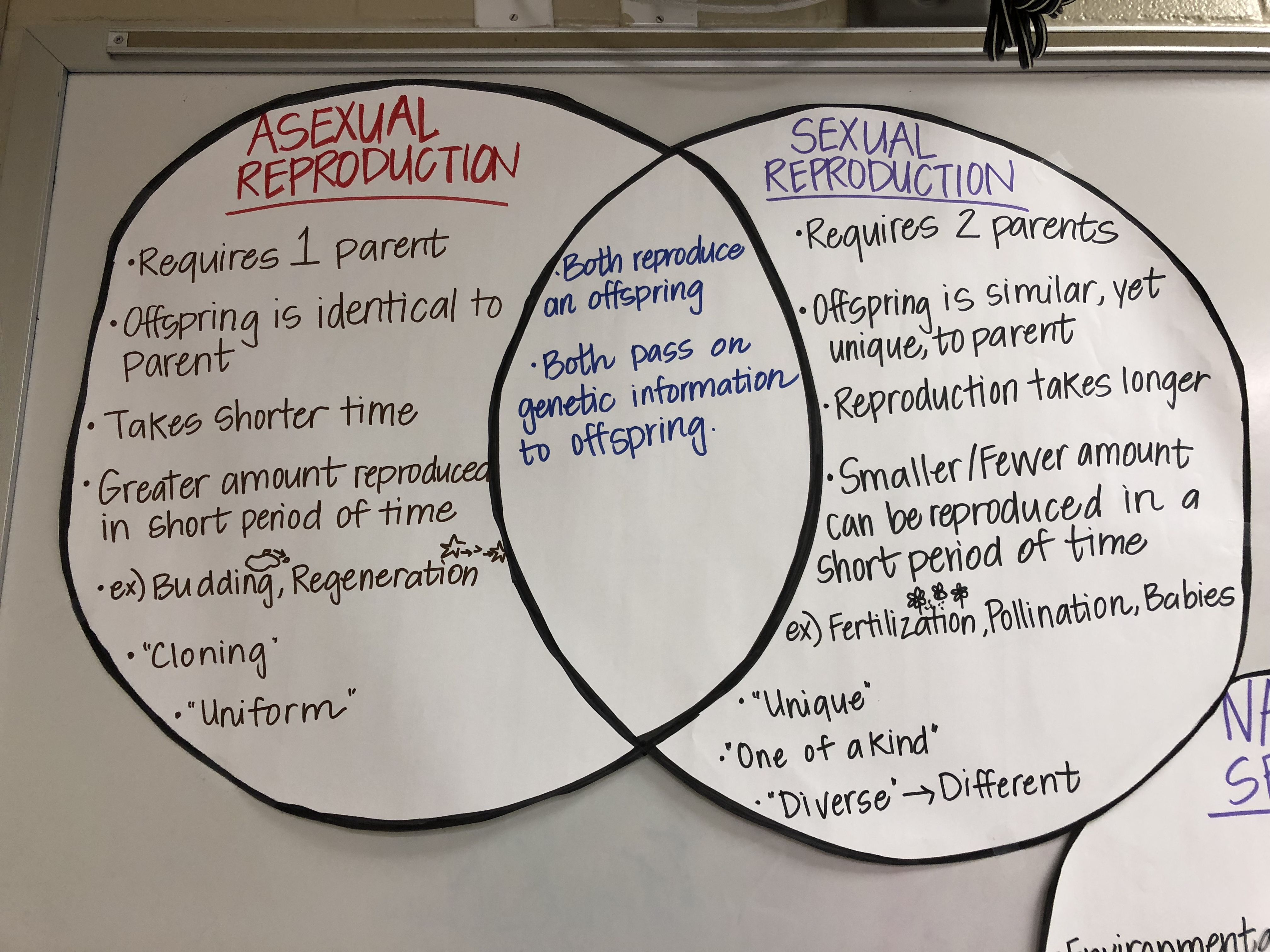 Venn Diagram Sexual And Asexual Reproduction Cobra Car Alarm System Wiring V Anchor Chart
