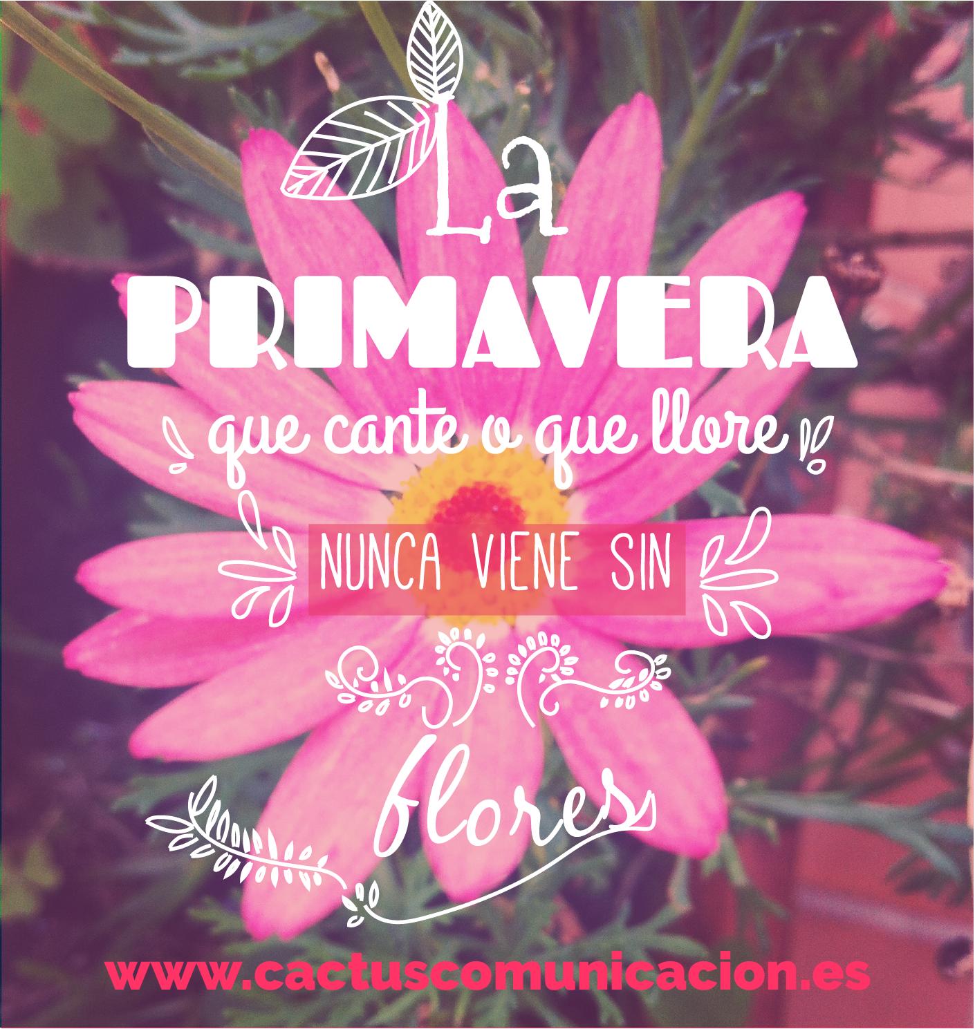 Bienvenida #primavera! #calendario #cactusdar | Imagenes de feliz primavera,  Feliz primavera, Frases de primavera