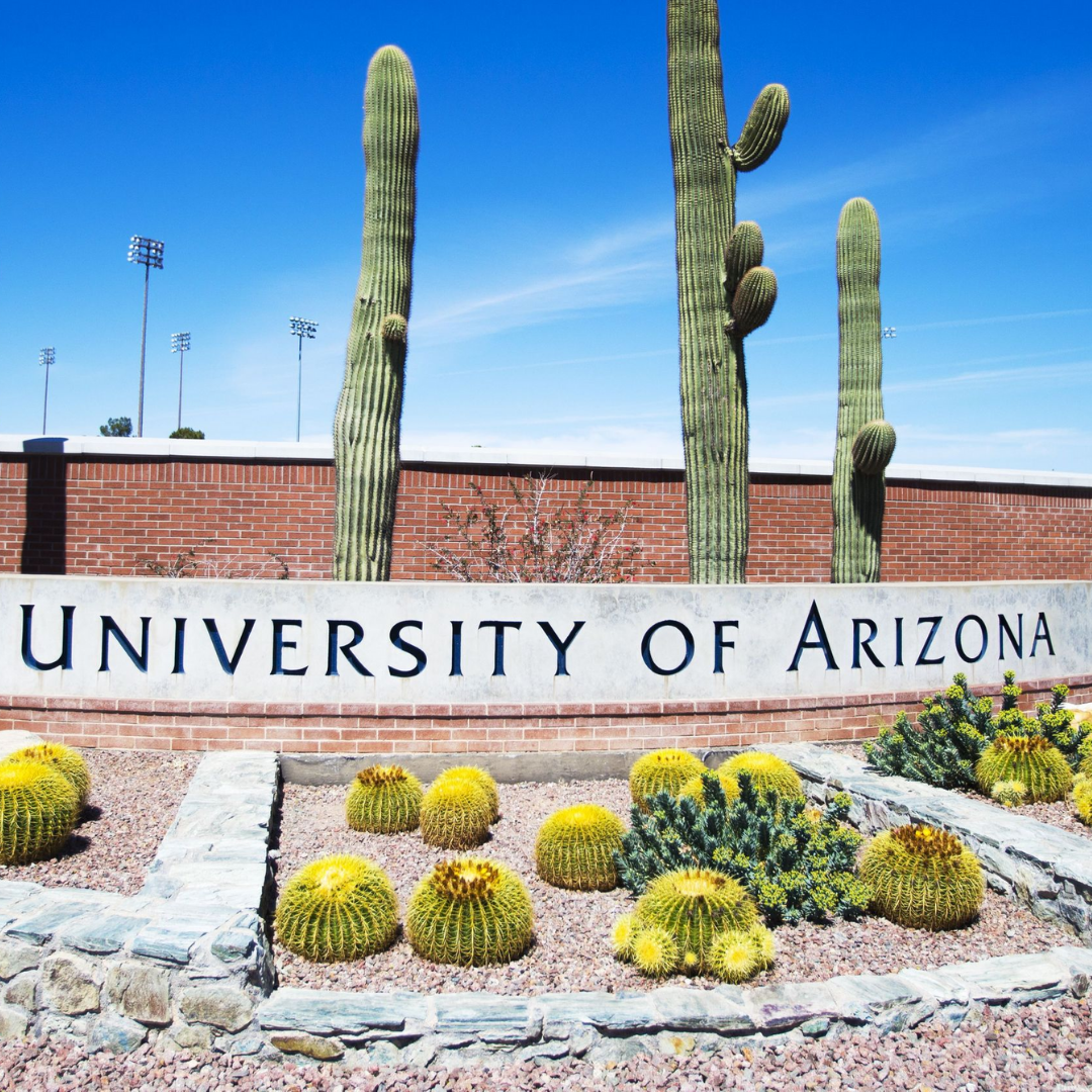 University of arizona application essay