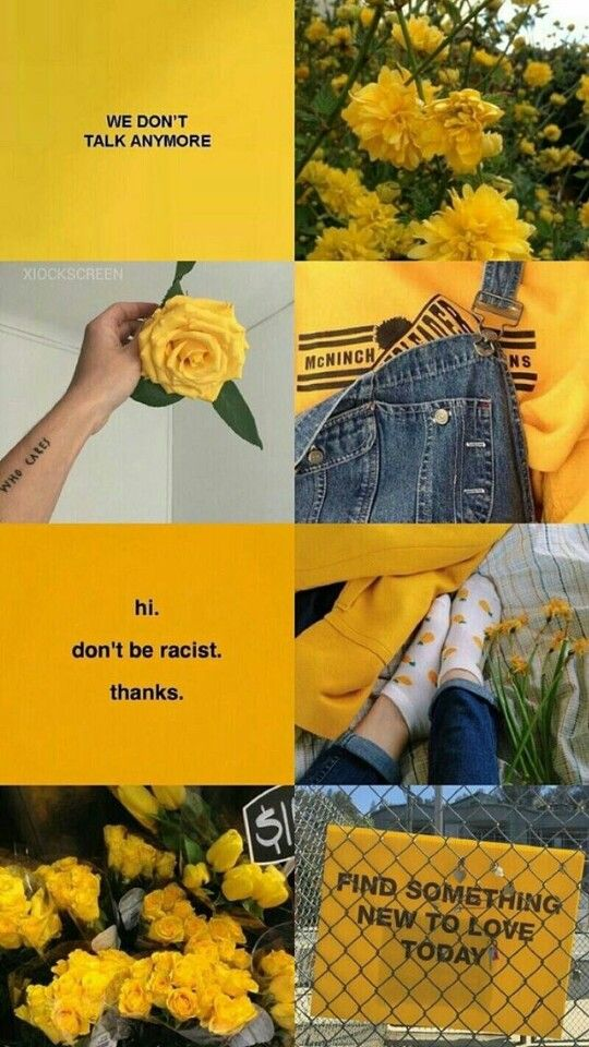 Download Latest Aesthetic Yellow Iphone X Wallpaper Today