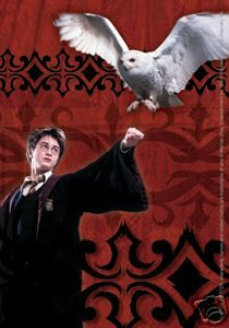 Harry Potter & Hedwig Sticker