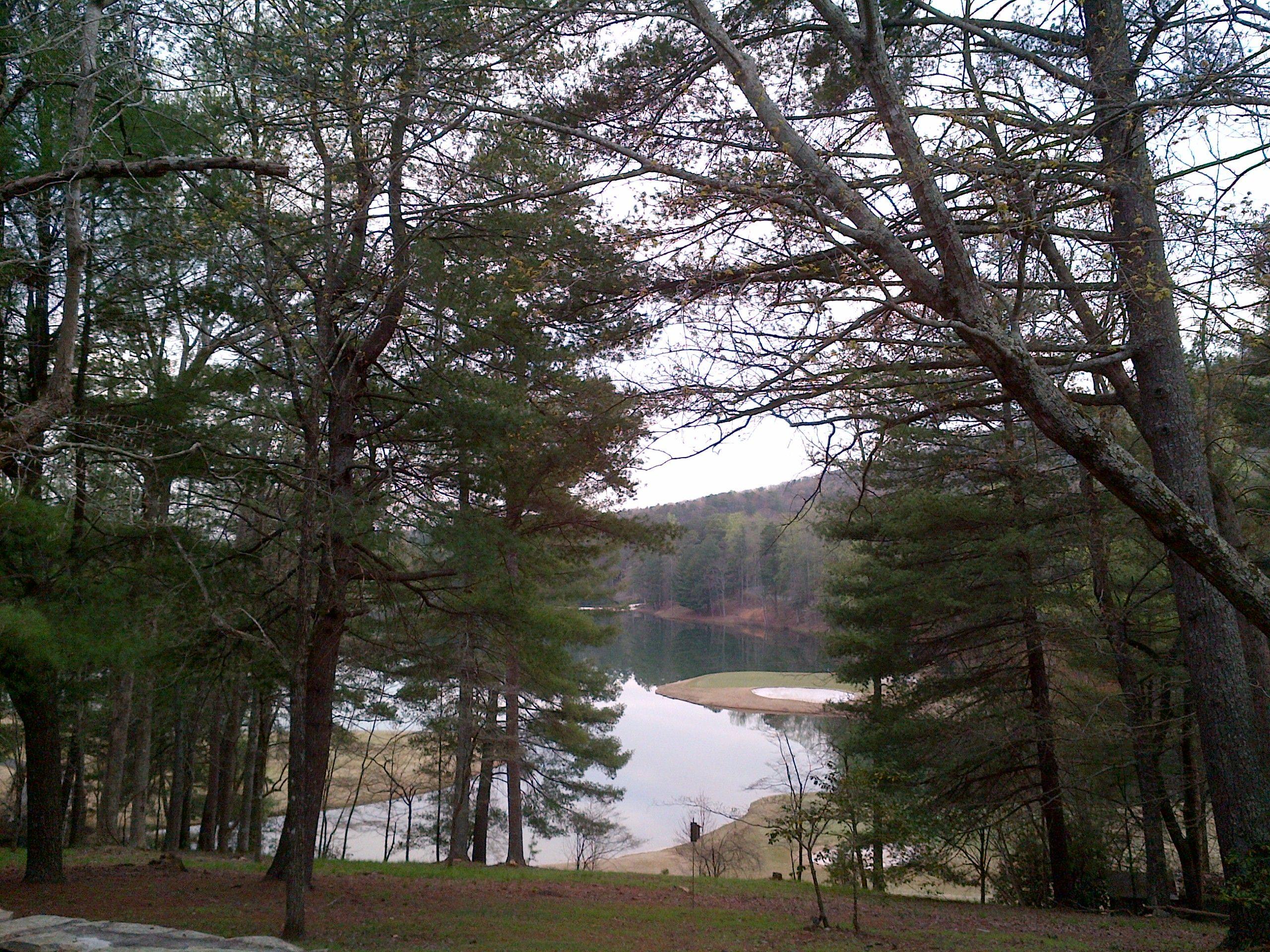 Big Canoe, GA Tree house, Tree, Canoe