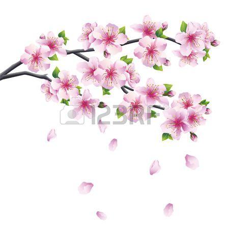 Blossoming Branch Of Sakura Japanese Cherry Tree With Falling Cherry Blossom Drawing Cherry Blossom Tree Tattoo Blossom Tree Tattoo