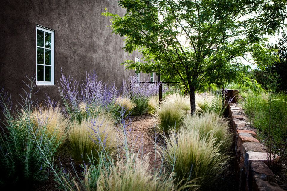 design with nature landscapes / paschall garden, tano road santa fe