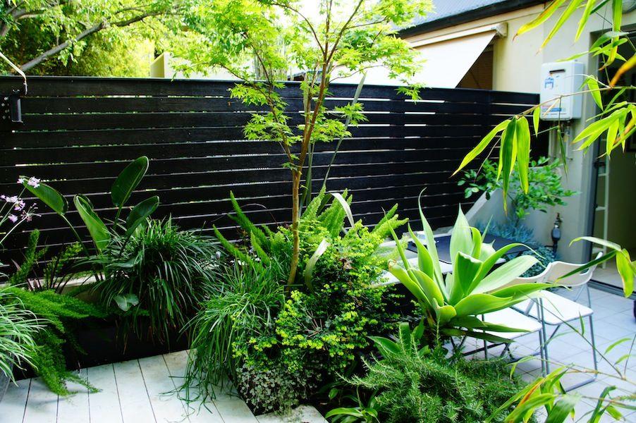 AILDM Awards gardens GardenDrum Silver Award Chris Webb Garden