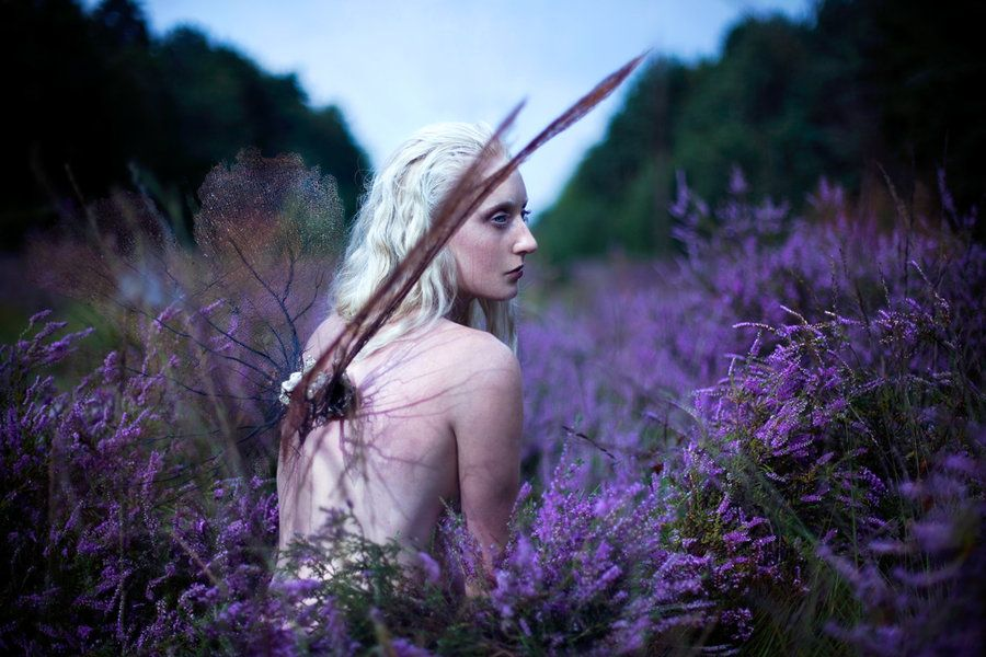 Euphaeidae  (Gossamer Wing) by Kirsty Mitchell on 500px