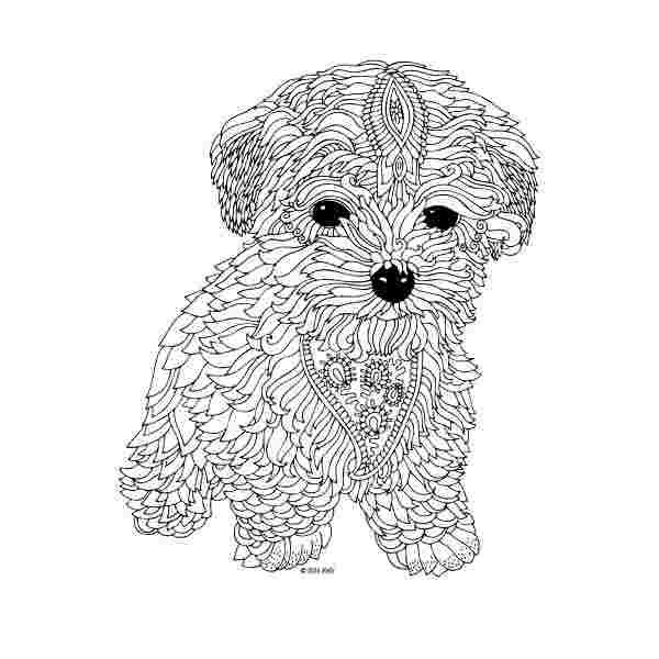 dog coloring pages for adults adultcoloringpages dog