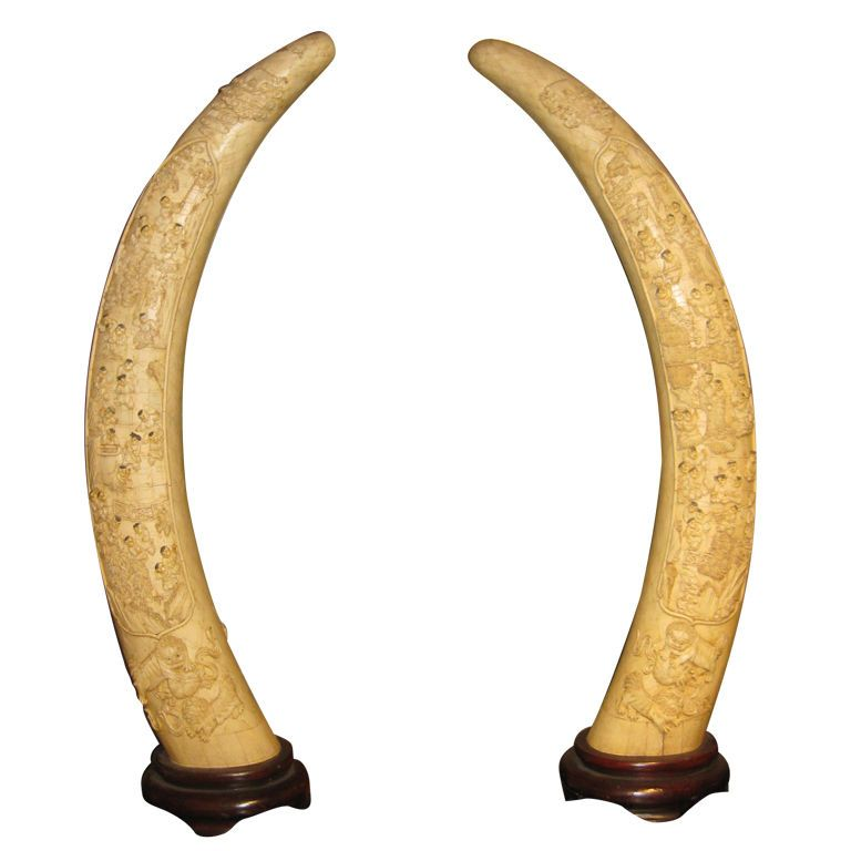 Chinese Carved Bone Tusks From A Unique Collection Of Antique And Modern Sculptures And Carvings At Http Antique Sculpture Bone Carving Sculptures For Sale