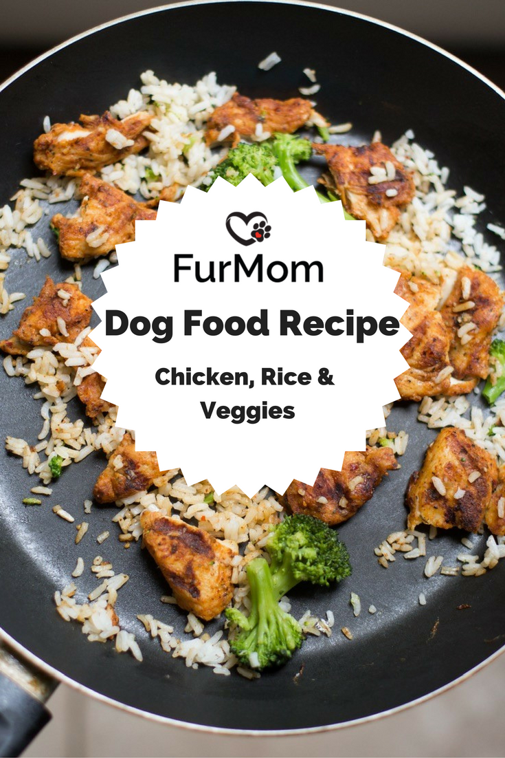 Chicken rice and veggie dog food recipe homemade dog and dog chicken rice and veggie dog food forumfinder Choice Image