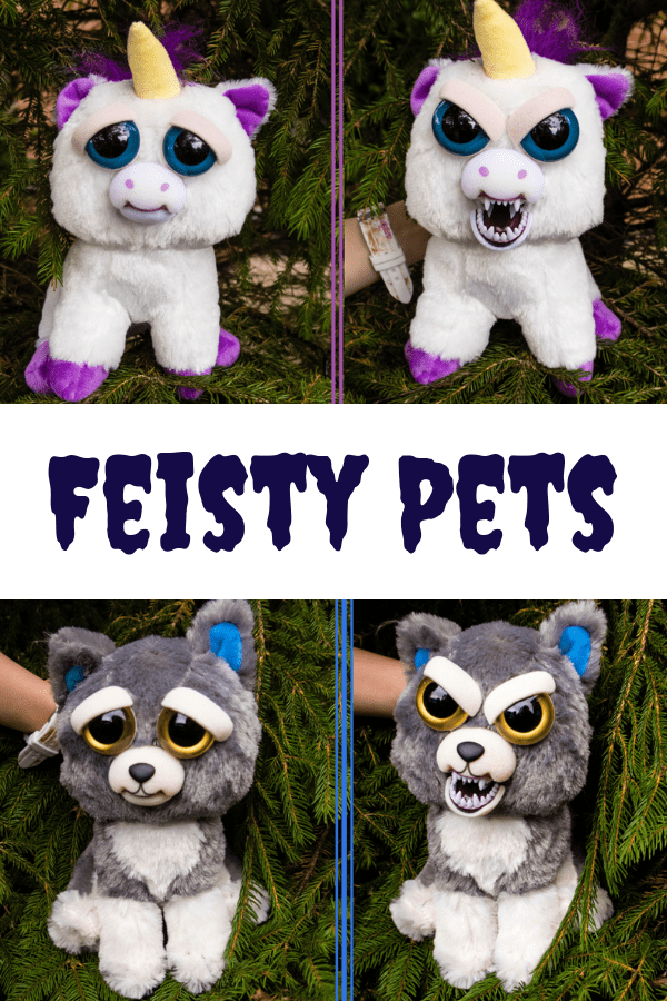 Feisty Pets Are Cuddly Little Animals One Minute And Turn From