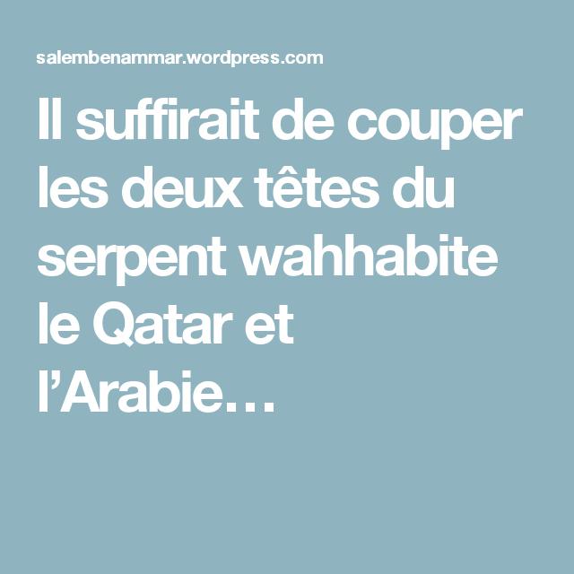Il suffirait de couper les deux têtes du serpent wahhabite le Qatar et l'Arabie…