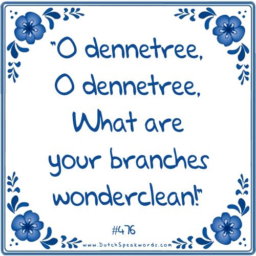 O Denneboom O Denneboom Wat Zijn Je Takken Wonderschoon