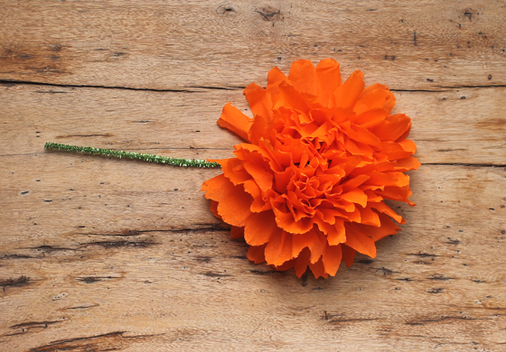 Make mexican paper flowers for day of the dead or cinco de mayo how to mexican paper flowers orange crepe paper craft mightylinksfo